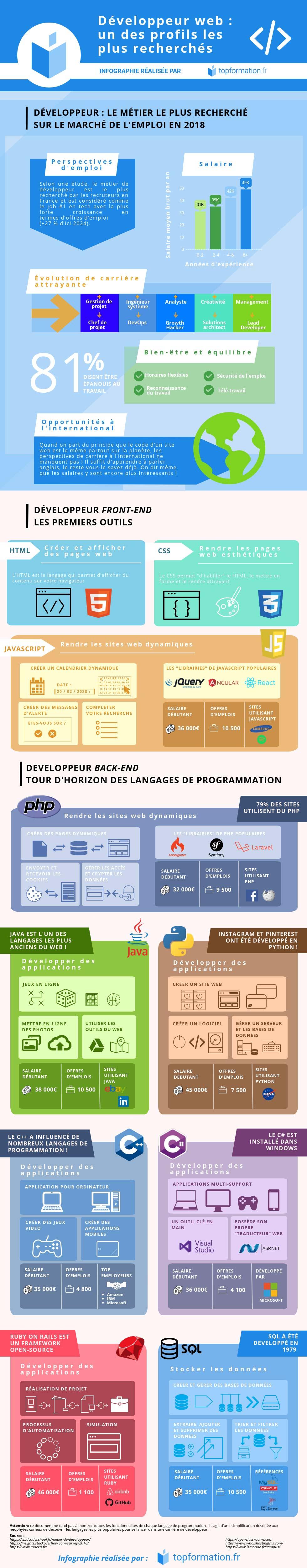 infographie metier developpeur web